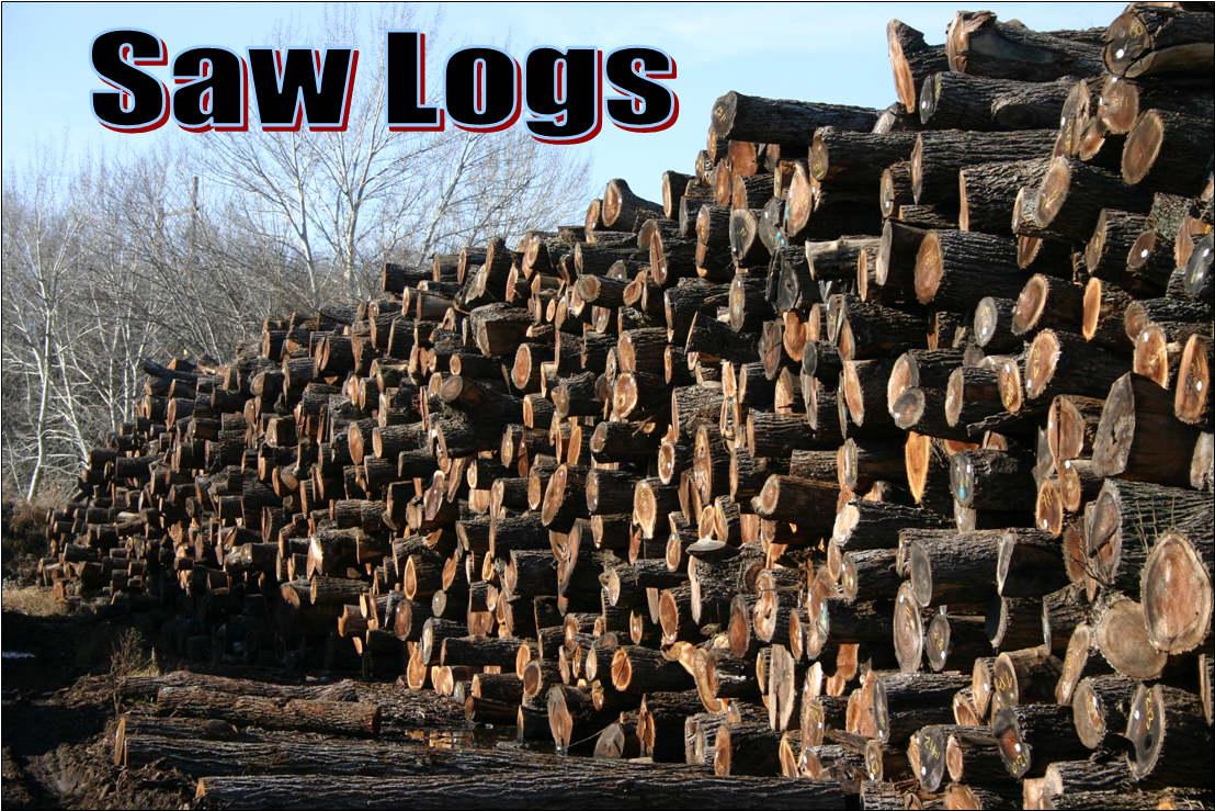 Midwest Walnut Logs