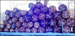 Midwest Walnut Veneer Logs